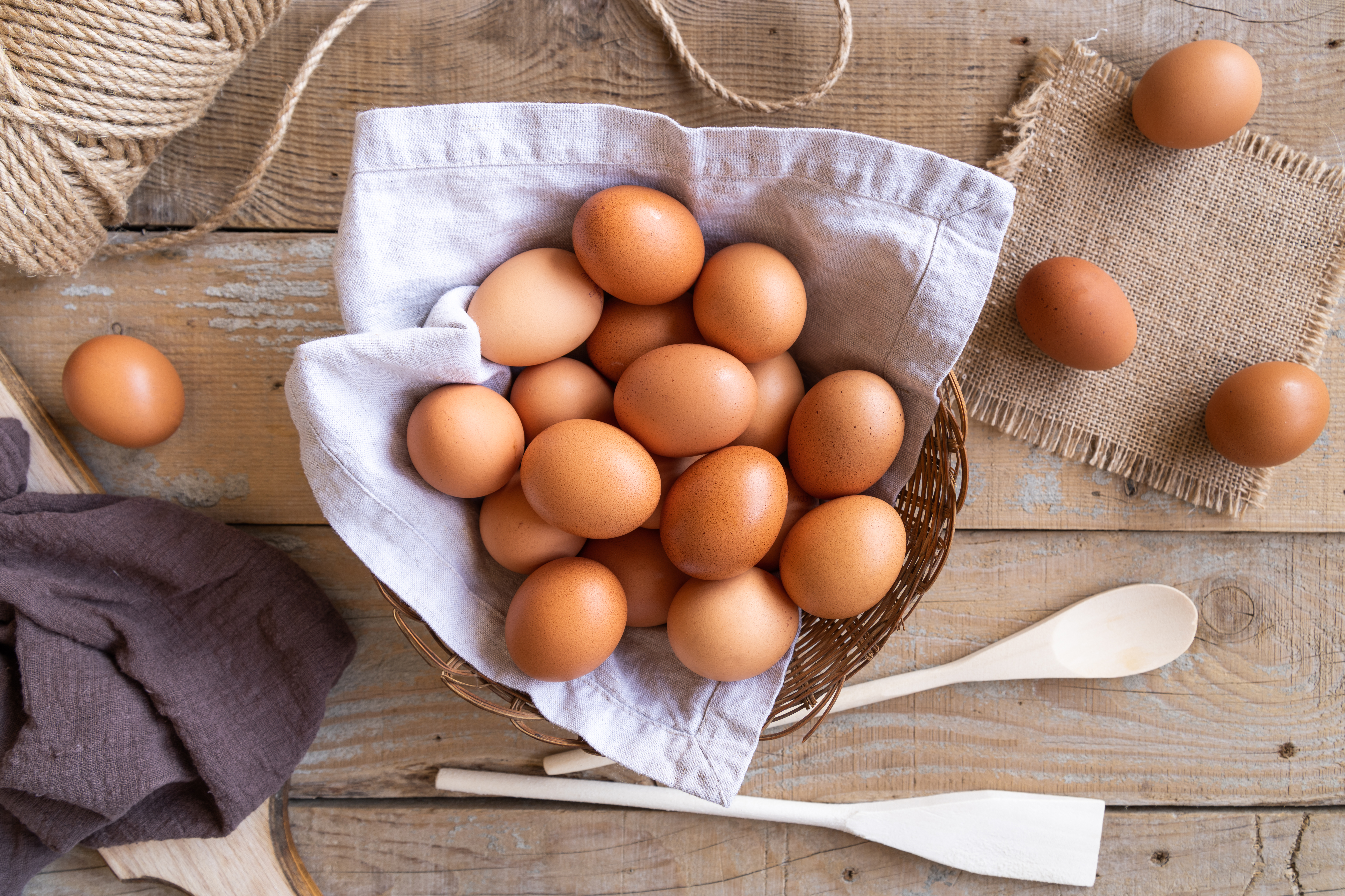 vejce